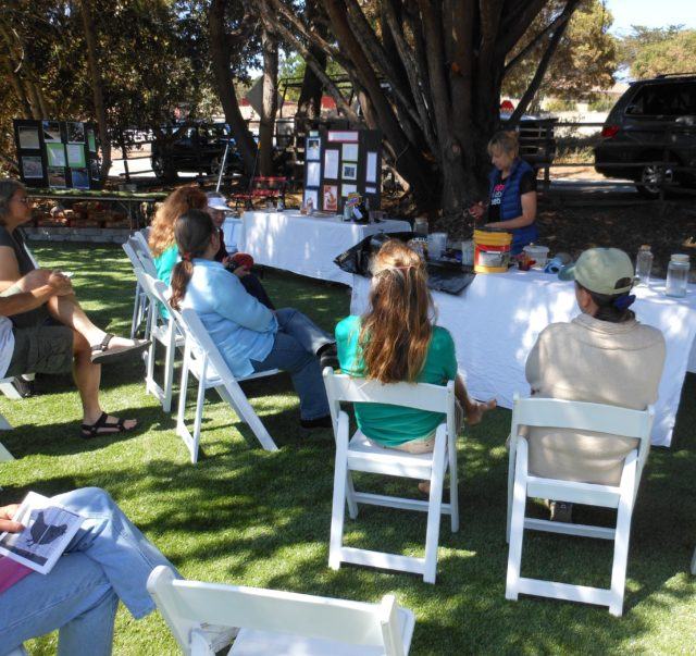 Info Fair in Del Rey Oaks - making garden stones