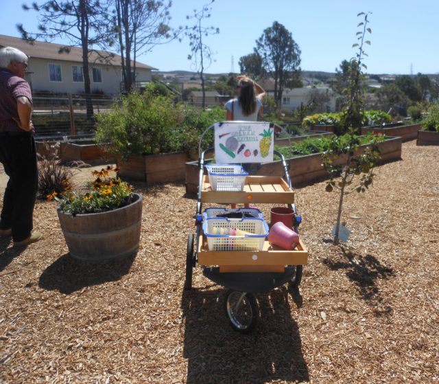 International School of Monterey - School Garden